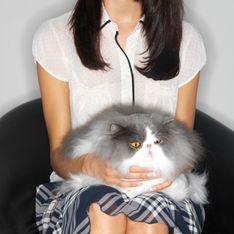 Insolite : Une famille entière retenue en otage par... son chat !
