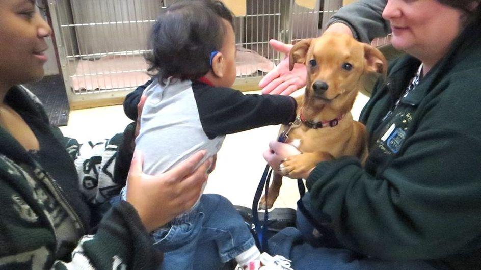 Un niño y un perro unidos por la misma enfermedad
