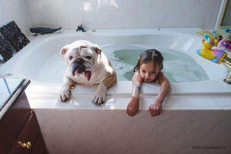Harper et Lola, un bouledogue anglais