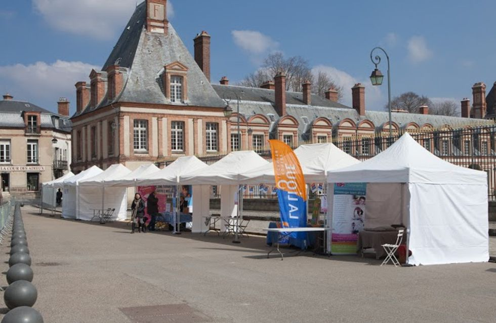 La foulée impériale de Fontainebleau : courez dans un château !