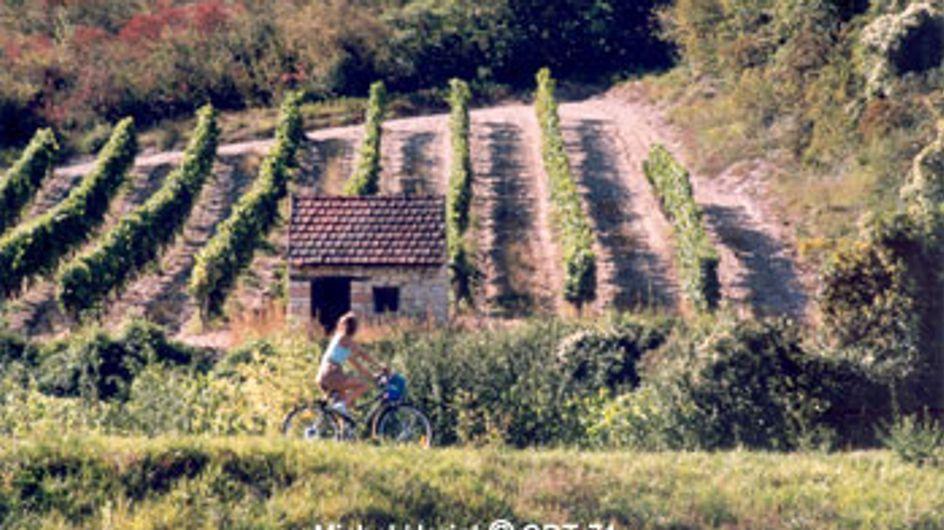 Voies vertes : baladez-vous dans toute la France