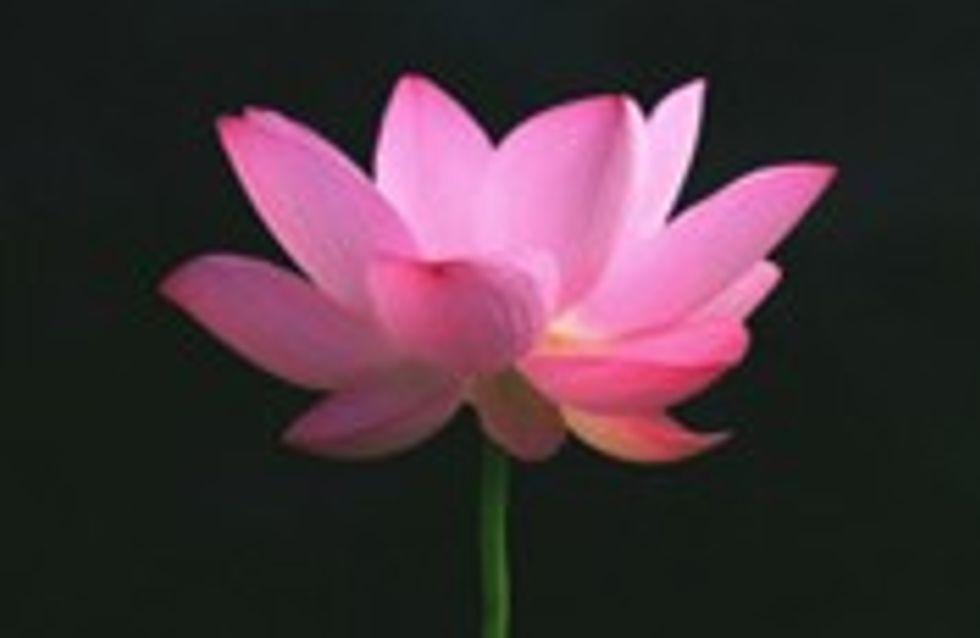 Spa des 7 Harmonies : faites le vide !
