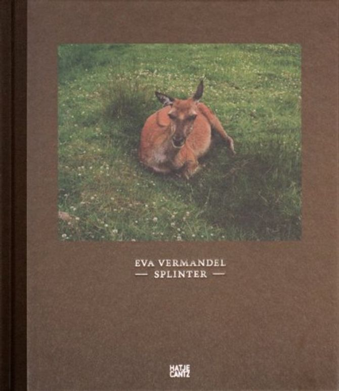 Splinter - Eva Vermandel