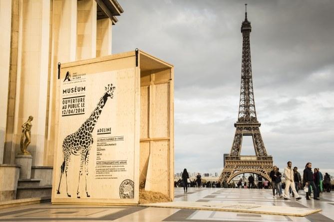 Les animaux du Parc Zoologique de Paris en ville