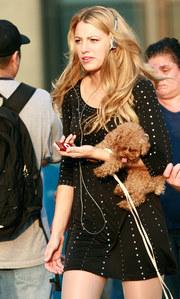 Blake Lively et son petit chien Penny