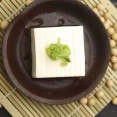 Tōfu: il formaggio vegetale con pochissime calorie