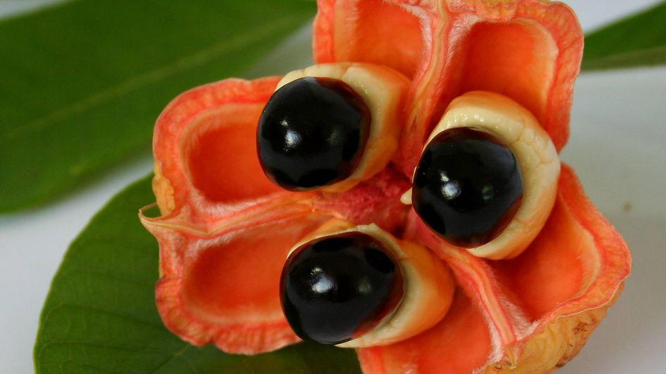 Hai voglia di frutta? Questi ti lasceranno a bocca aperta!