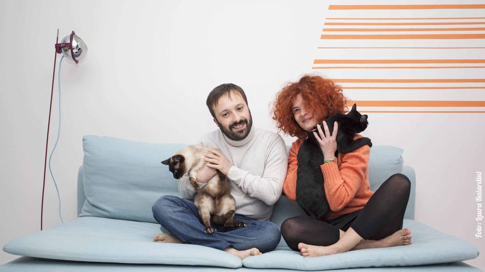 È nato PetMe, il primo social dedicato agli animali