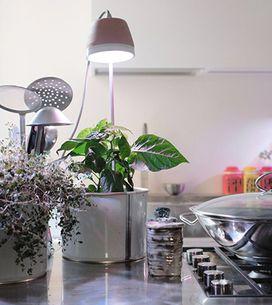 L'orto si fa in casa: 5 utili gadget per coltivare erbe e piante con facilità