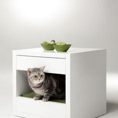 Mai più senza: il comodino cuccia per gatti e cani