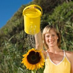 ¿Cómo recuperar el agua de lluvia?