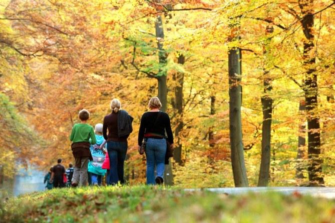 Promenade Nature