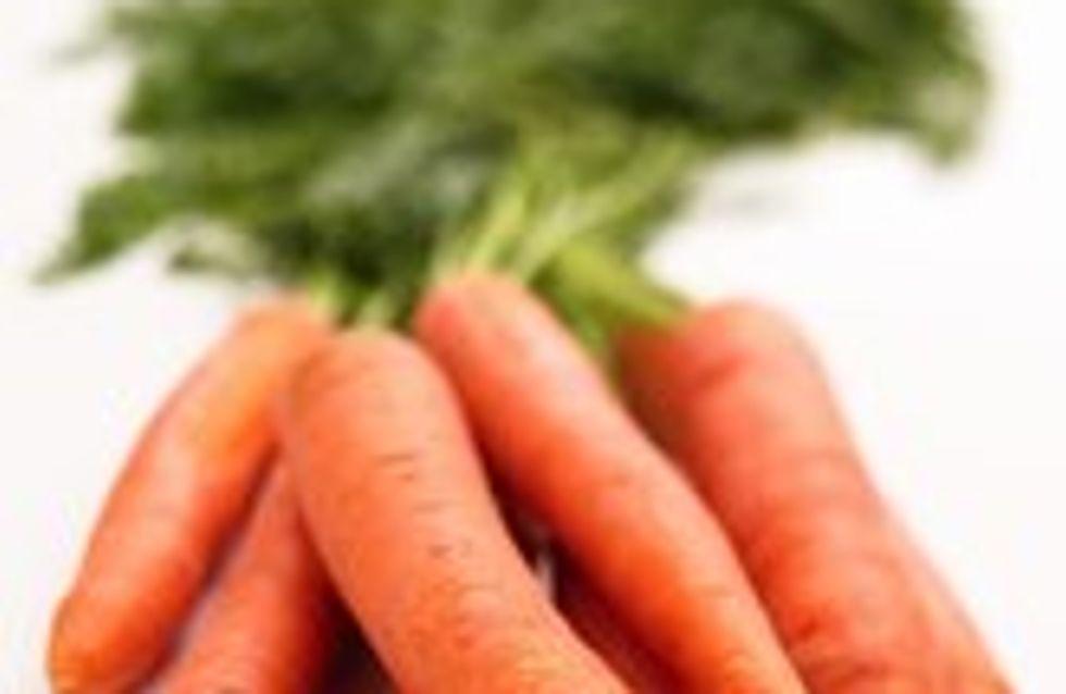 Todo sobre las zanahorias