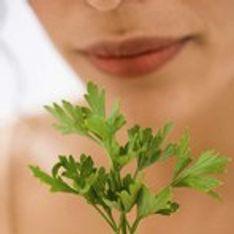 Cultivar plantas aromáticas
