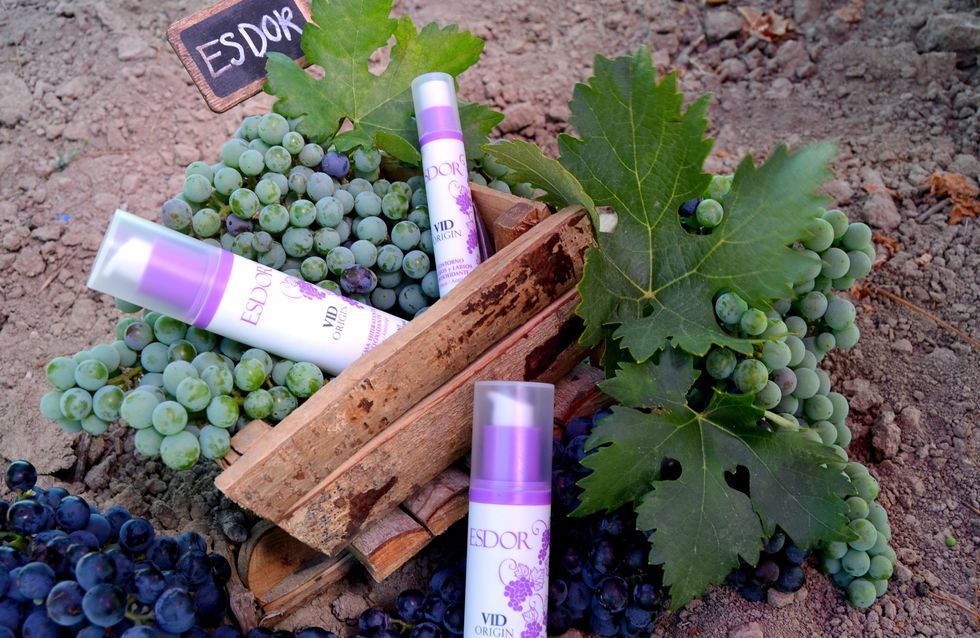Cosmeticatas, un nuevo concepto enoturístico con el que descubrir y saborear todas las propiedades del vino