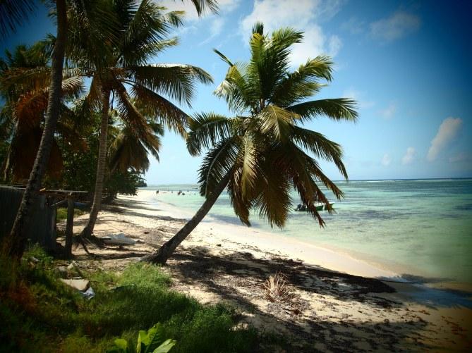 Les plages paradisiaques de l'île de Marie Galante