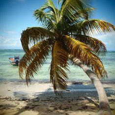 Vacances en Guadeloupe : quel hôtel choisir ?