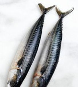 Choosing, preparing and cooking fish