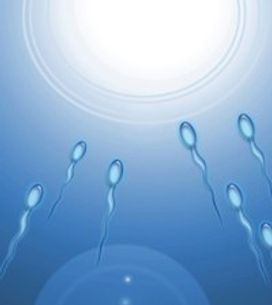 World's first fertility app available on the iPhone