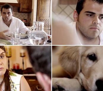 Video/ E il cane? Lasciamolo sotto casa. Il video contro l'abbandono dei cani