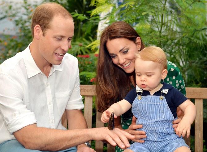 Le prince George découvre l'expo sur les papillons au Musée d'Histoire Naturelle