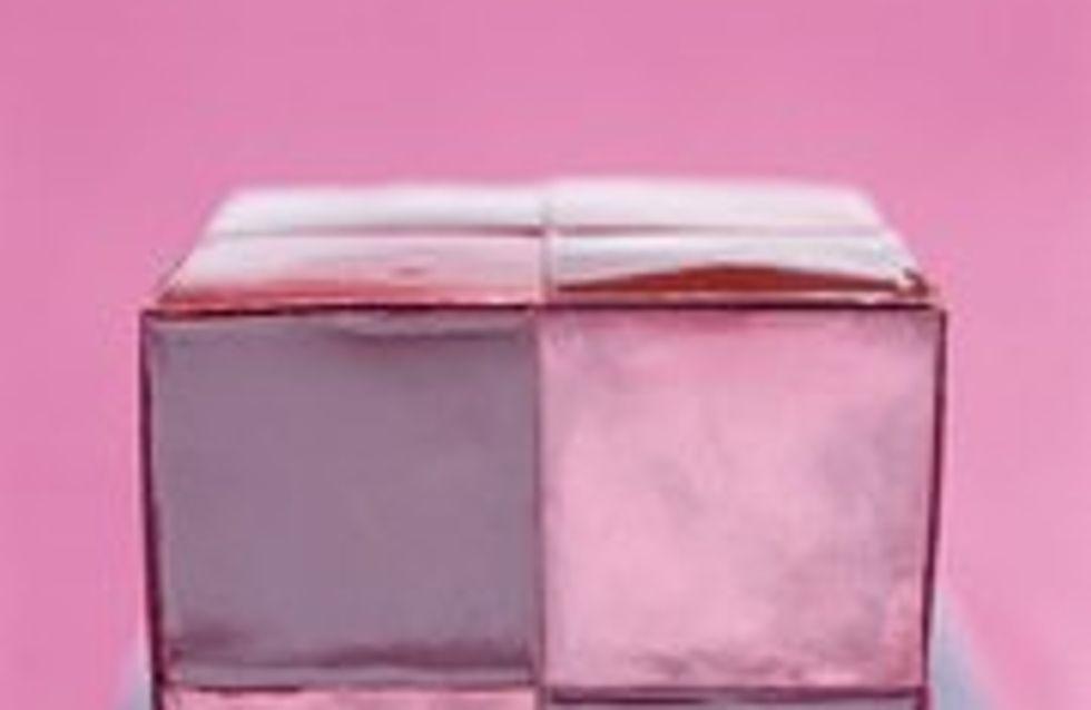 Bûche Hibiscube, un dessert beau et bon à la fois !