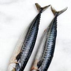 Connaître, choisir et préparer les poissons