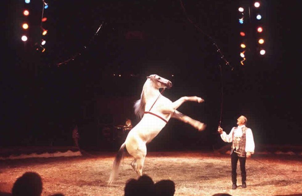 Les Gruss : la dynastie du cirque