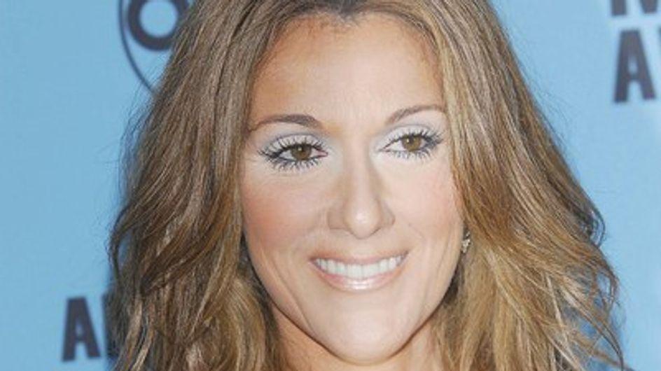 Céline Dion : elle se fait construire un parc aquatique privé !