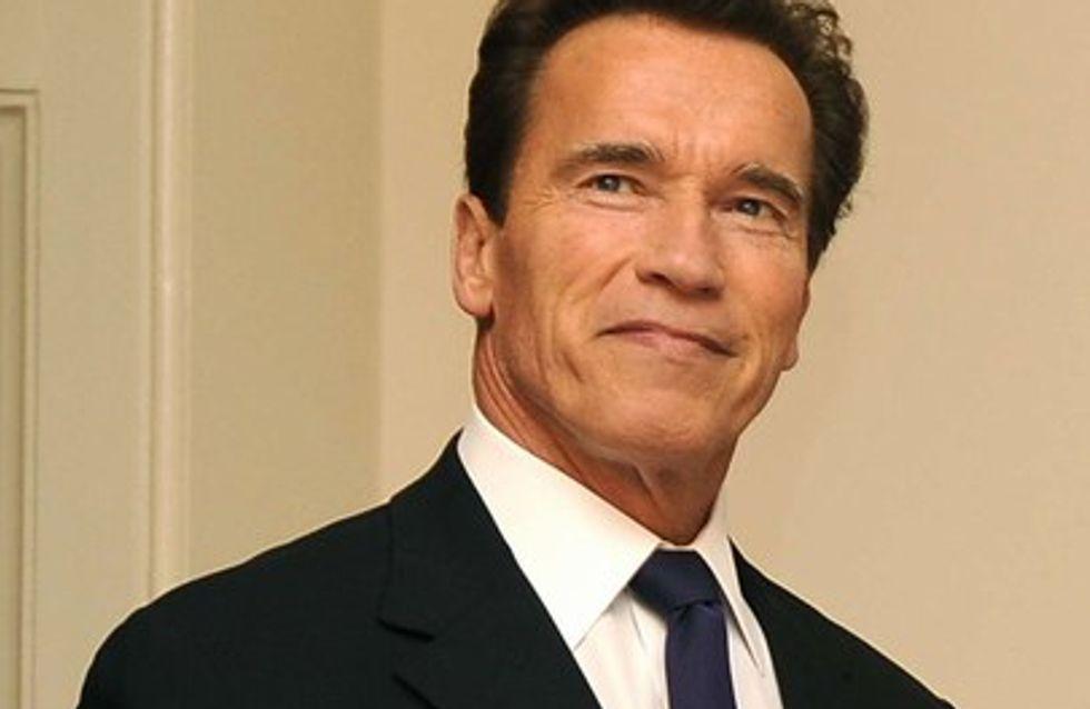 Arnold Schwarzenegger violent ?