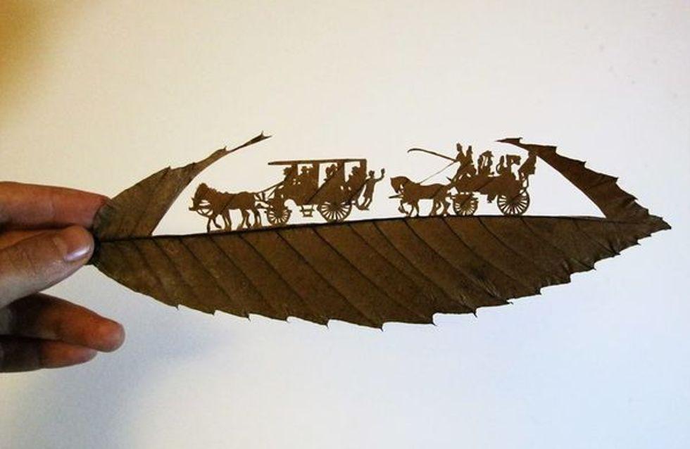 La maravillosa obra de Omid Asedi: cuando la imaginación se encuentra con la naturaleza