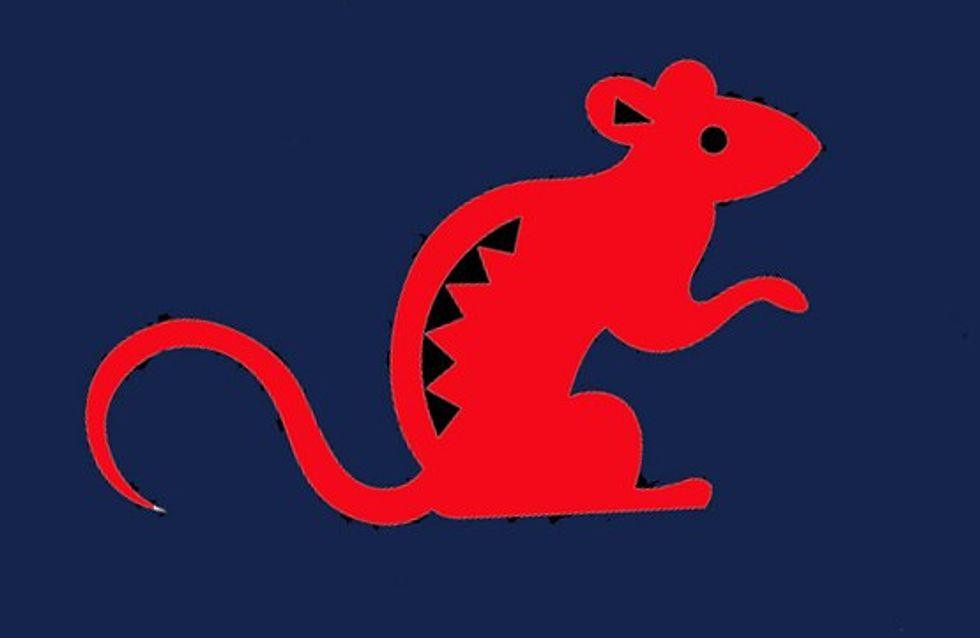 Le Rat : tout sur votre signe chinois