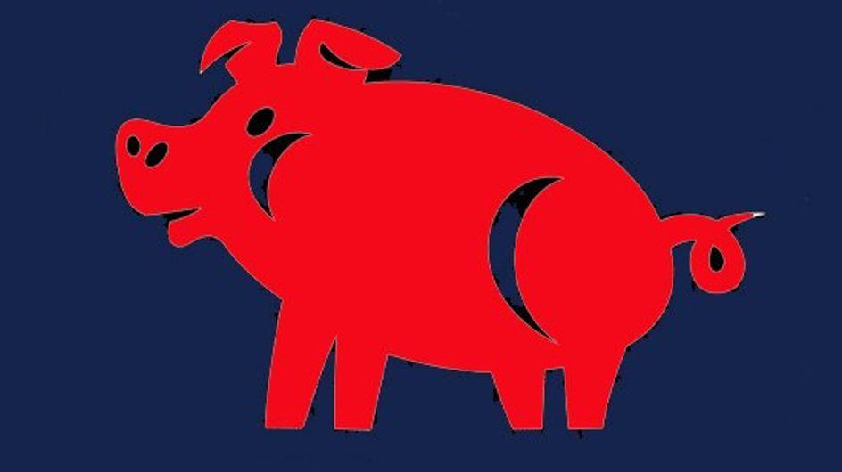 Le Cochon : tout sur votre signe chinois