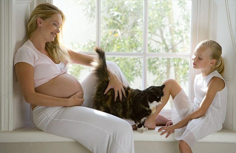 Por que a toxoplasmose na gravidez é tão perigosa?