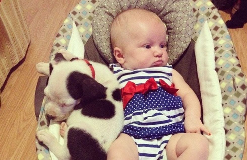 We Can't Decide Which Is Cuter: The Puppy Or The Baby?