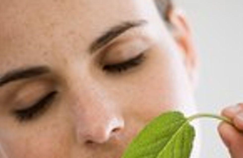 20 gesti ecologici da adottare
