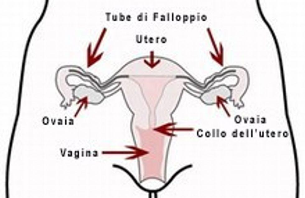 Il cancro alle ovaie