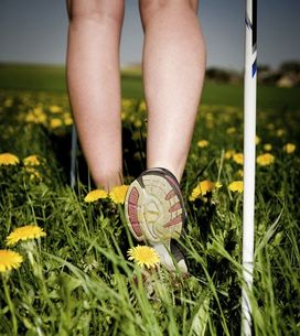 Nordic walking, lo sport per tutti