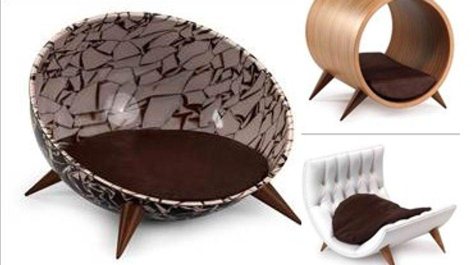 Cucce di design da 1200 euro