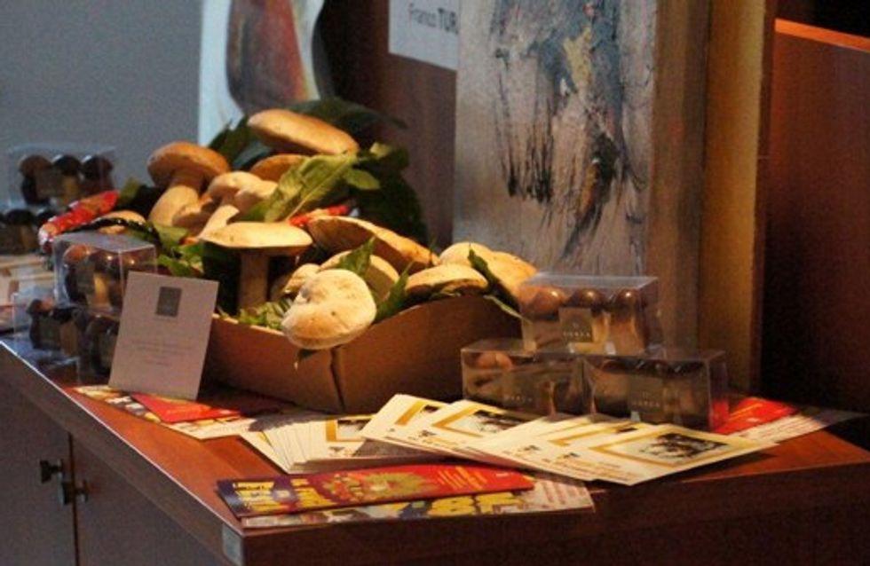 Fungo d'Oro 2012 in Piemonte