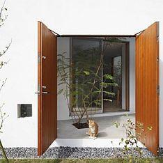 Una casa a misura di gatto