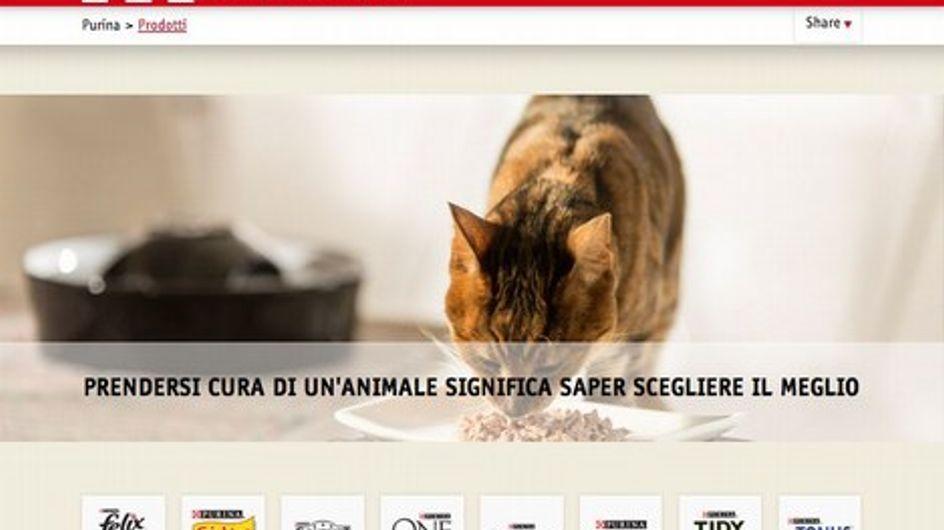 """Le mamme blogger """"A Scuola di PetCare®"""" con Purina"""
