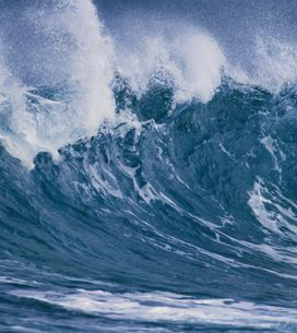 Tsunami de 2004 : Portée disparue, une petite fille retrouve ses parents 10 ans