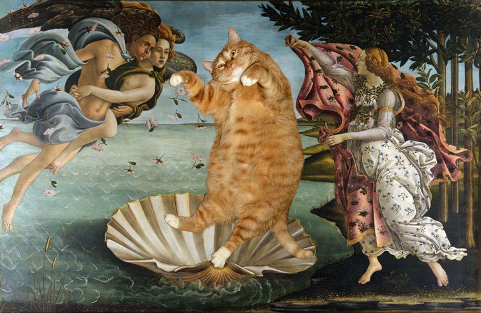Kunst und Katzen - passt das zusammen? Na klar! Das Ergebnis ist zum Kugeln!