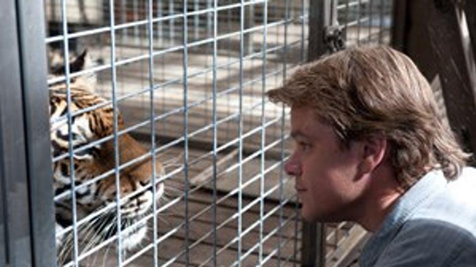 Matt Damon kauft einen Zoo