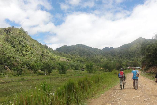 Dans la jungle à Bario