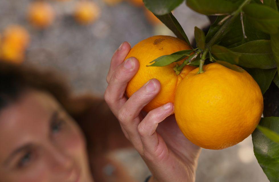Scopri Orange Fiber: l'abito fatto con gli scarti delle arance