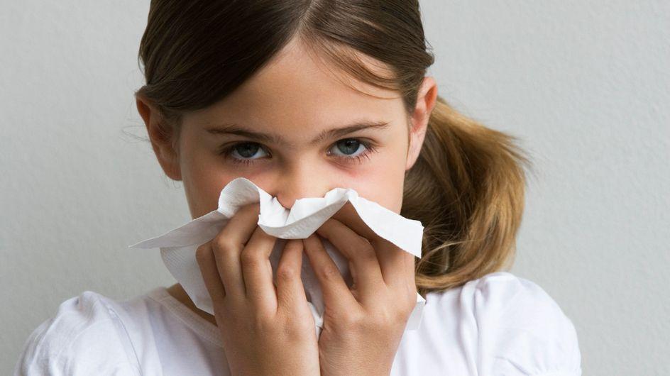 Scolarité : Les allergies, à l'origine d'un manque de concentration ?