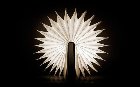 Buch-Lampe