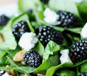 Boost Your Brain Power! The 10 Best Foods For Your Brain
